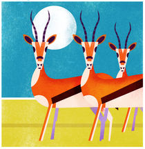 Gazelles by Benjamin Bay