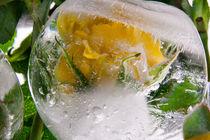 Yellow rose II in ice 1 von Marc Heiligenstein