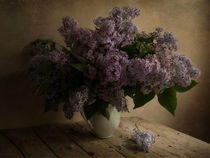 Fresh lilac in white pot by Jarek Blaminsky