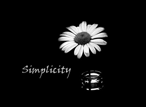 Daisy-simplicity