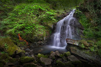 Rhigos Waterfall by Leighton Collins