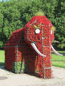 Blumenelefant von Angelika  Schütgens