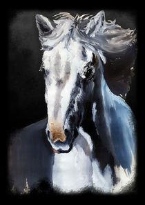 Wild White Horse from the Dark  von bluedarkart-lem