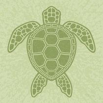 Green Sea Turtle von John Schwegel
