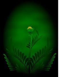 Birth of a flower by Tim Seward