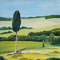 Einsame Zypresse bei Terrapille in der Toskana von Christine Huwer