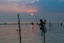 Stelzenfischer am Koggala-Riff | Sri Lanka von Thomas Keller