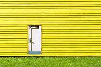 Yellow Wall by Steffan  Martens