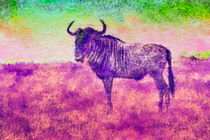 Gnu - Kenia by Viktor Peschel