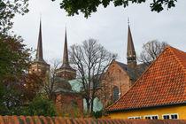 Domkirche von Roskilde von Sabine Radtke