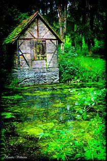 Mystischer Wald Legenden by Sandra  Vollmann