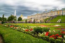 Garden in Peterhof by ronny