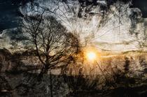 Holz  von Barbara  Keichel