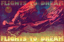flights to dream 02 von Vladimir Krstic