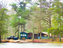 Lake Cheaha picnic area von lanjee chee
