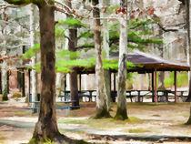 Pavilion at Cheaha state park von lanjee chee