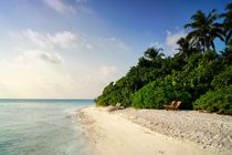 Einsamer Strand von Bruno Schmidiger