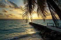 Sonnenaufgang im Paradies von Bruno Schmidiger