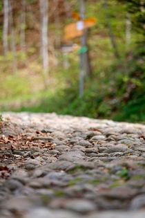 Pflastersteine am Jakobsweg by geoland