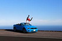 Mann sprint vor Freude in Ford Mustang Cabriolet von geoland