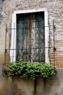 Venice by May Kay