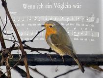 Notenblatt - Wenn ich ein Vöglein wär... von Chris Berger