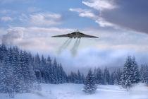 Winter flight by James Biggadike