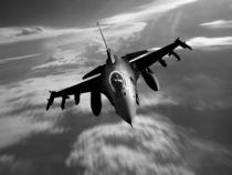 F16 Fighting Falcon von James Biggadike