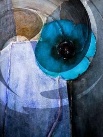 Blue Poppy - Blaumohn von Chris Berger