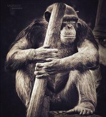 Monkey warrior by Ingo Menhard