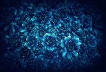 Bluetiful by Ingo Menhard