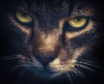 Pixelcat von Ingo Menhard