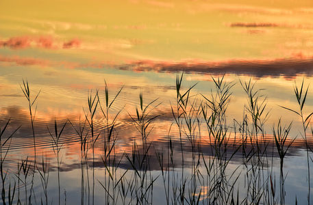 Sunset-shore-sweden