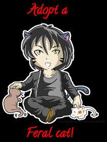 Addopt a Cat von reenave