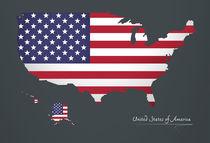 USA Map Artwork Special Edition von Ingo Menhard