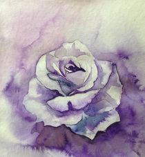"""Ton in Ton Zeichnung Rose von Dorothea """"Elia"""" Piper"""
