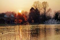 Abend im Park by Hartmut Binder