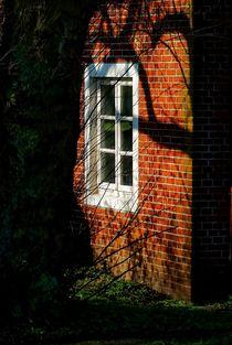 Licht & Schatten von Peter Hebgen