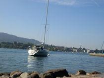 Zürichsee, Zürich by Steffanie Reimann