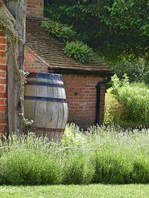 Jane Austen House, Chawton by Steffanie Reimann