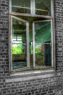 Windows 16 von Susanne  Mauz
