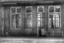 Windows von Susanne  Mauz