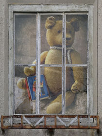 'Fensterbild - the collector' by Chris Berger