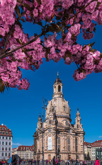Die Dresdner Frauenkirche im Frühling – Fotografie von elbvue by elbvue