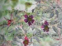 waltz melody - Walzermelodie von Chris Berger