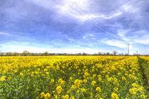 Yellow Fields Of Summer Art by David Pyatt