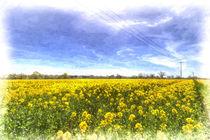 Yellow Fields Of Summer Art von David Pyatt
