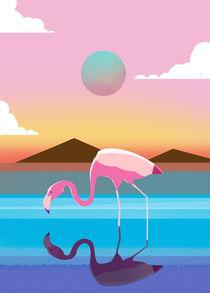 Flamingo by Sunny Seth
