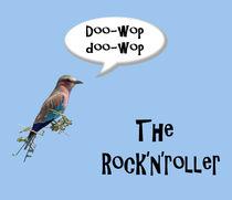 Lilac-breasted roller (Coracias caudatus) sings rock and roll, a rock'n'roller. by kytefoto