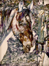 Portrait of Horse by lanjee chee